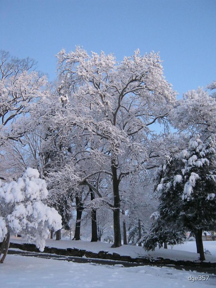 Feb. 19 2012 Snowstorm 76 by dge357