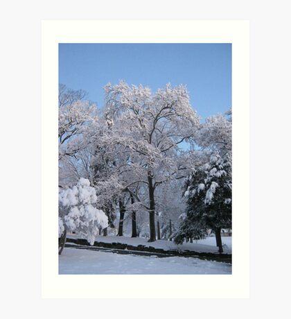 Feb. 19 2012 Snowstorm 77 Art Print