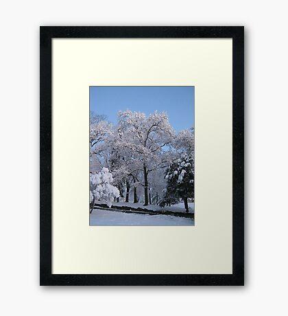 Feb. 19 2012 Snowstorm 77 Framed Print