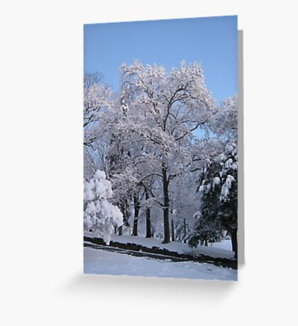 Feb. 19 2012 Snowstorm 77 Greeting Card