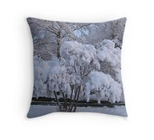 Feb. 19 2012 Snowstorm 79 Throw Pillow