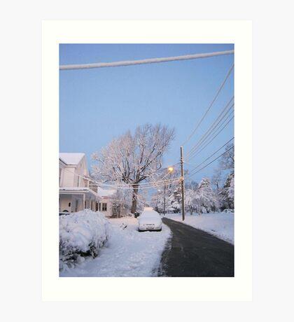 Feb. 19 2012 Snowstorm 80 Art Print