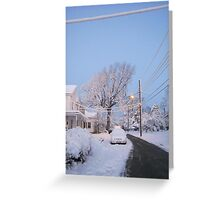 Feb. 19 2012 Snowstorm 80 Greeting Card