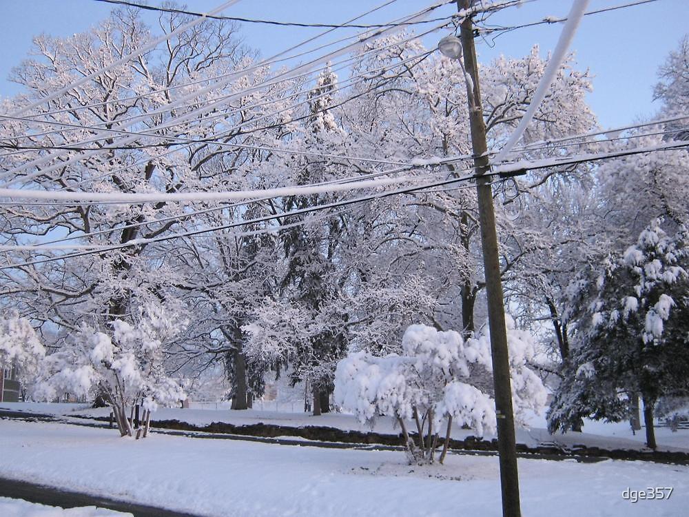 Feb. 19 2012 Snowstorm 85 by dge357