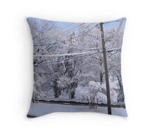Feb. 19 2012 Snowstorm 85 Throw Pillow