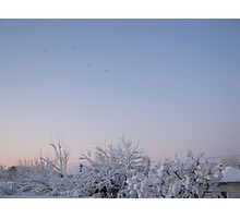 Feb. 19 2012 Snowstorm 87 Photographic Print