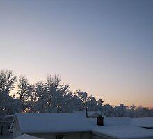 Feb. 19 2012 Snowstorm 88 by dge357
