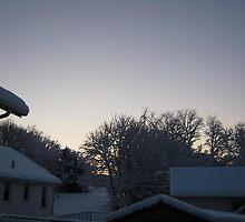 Feb. 19 2012 Snowstorm 91 by dge357