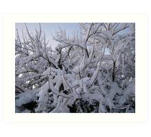 Feb. 19 2012 Snowstorm 95 Art Print