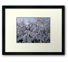 Feb. 19 2012 Snowstorm 95 Framed Print