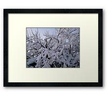 Feb. 19 2012 Snowstorm 95 Framed Print