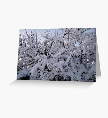 Feb. 19 2012 Snowstorm 95 Greeting Card