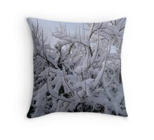 Feb. 19 2012 Snowstorm 95 Throw Pillow