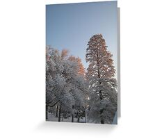 Feb. 19 2012 Snowstorm 98 Greeting Card
