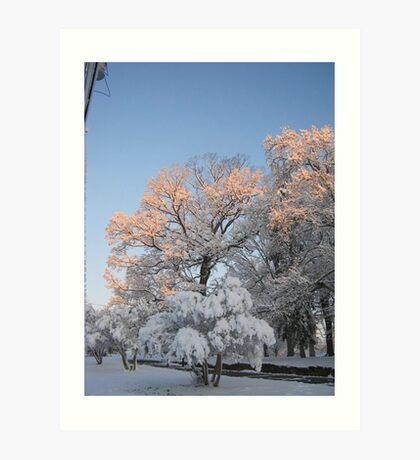 Feb. 19 2012 Snowstorm 99 Art Print