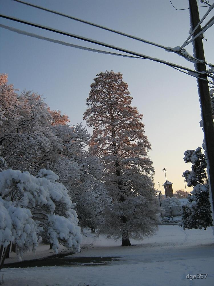 Feb. 19 2012 Snowstorm 102 by dge357
