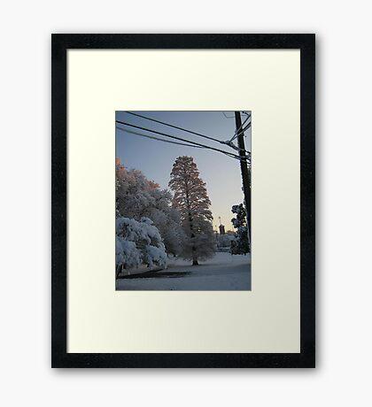 Feb. 19 2012 Snowstorm 102 Framed Print