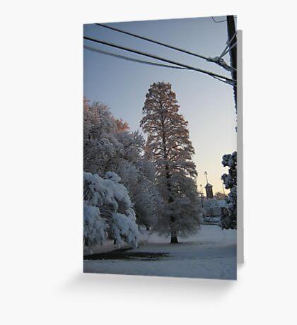 Feb. 19 2012 Snowstorm 102 Greeting Card