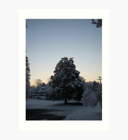 Feb. 19 2012 Snowstorm 103 Art Print