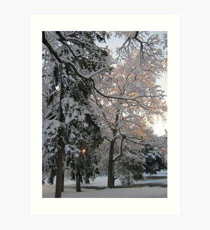 Feb. 19 2012 Snowstorm 106 Art Print