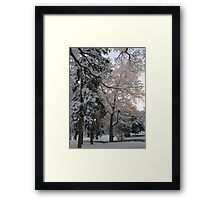 Feb. 19 2012 Snowstorm 106 Framed Print