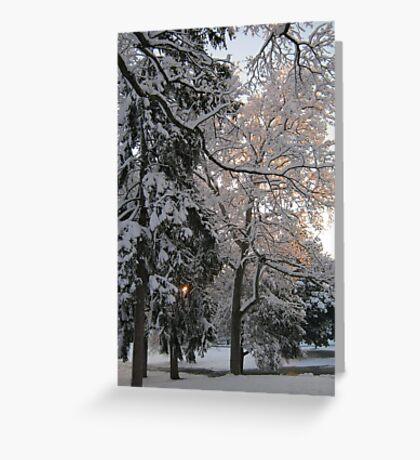 Feb. 19 2012 Snowstorm 106 Greeting Card