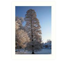 Feb. 19 2012 Snowstorm 110 Art Print
