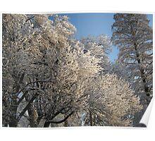 Feb. 19 2012 Snowstorm 111 Poster