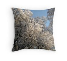 Feb. 19 2012 Snowstorm 111 Throw Pillow
