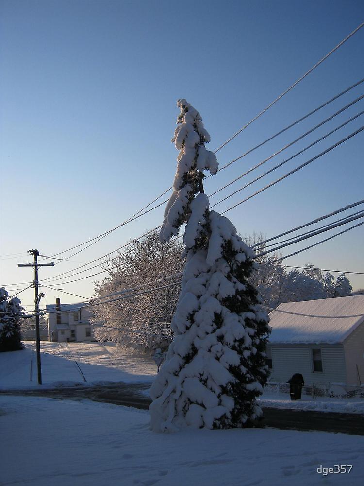 Feb. 19 2012 Snowstorm 112 by dge357