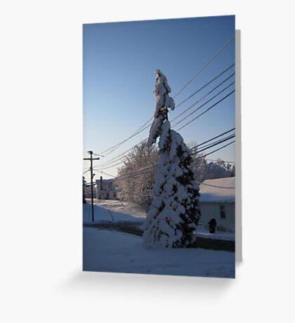 Feb. 19 2012 Snowstorm 112 Greeting Card