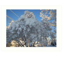 Feb. 19 2012 Snowstorm 114 Art Print