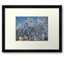 Feb. 19 2012 Snowstorm 114 Framed Print