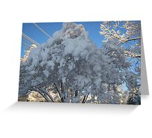 Feb. 19 2012 Snowstorm 114 Greeting Card