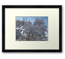 Feb. 19 2012 Snowstorm 116 Framed Print