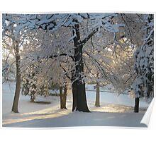Feb. 19 2012 Snowstorm 117 Poster