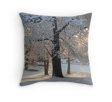 Feb. 19 2012 Snowstorm 117 Throw Pillow