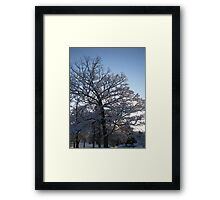 Feb. 19 2012 Snowstorm 118 Framed Print