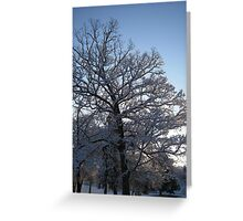 Feb. 19 2012 Snowstorm 118 Greeting Card