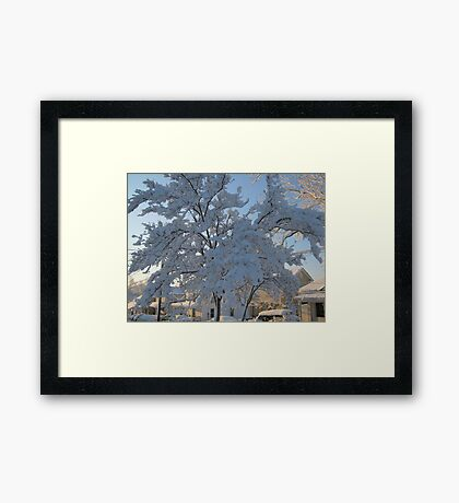 Feb. 19 2012 Snowstorm 119 Framed Print