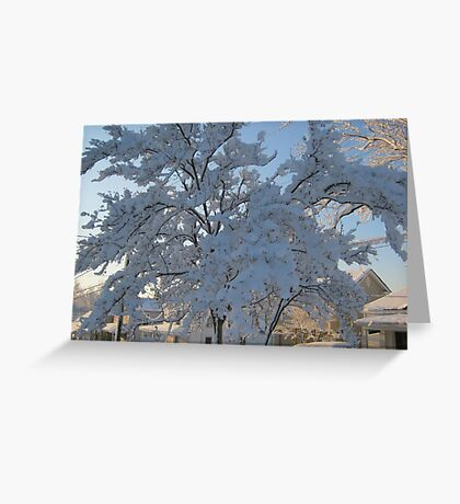 Feb. 19 2012 Snowstorm 119 Greeting Card