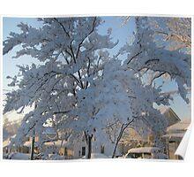 Feb. 19 2012 Snowstorm 119 Poster