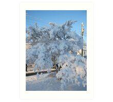 Feb. 19 2012 Snowstorm 120 Art Print