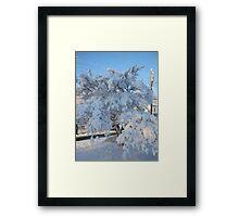Feb. 19 2012 Snowstorm 120 Framed Print