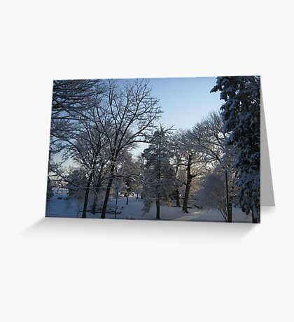 Feb. 19 2012 Snowstorm 121 Greeting Card