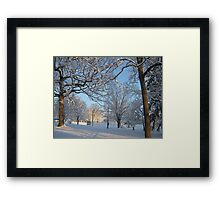 Feb. 19 2012 Snowstorm 126 Framed Print