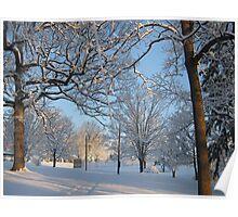 Feb. 19 2012 Snowstorm 126 Poster