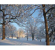 Feb. 19 2012 Snowstorm 126 Photographic Print