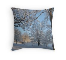 Feb. 19 2012 Snowstorm 126 Throw Pillow