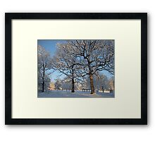 Feb. 19 2012 Snowstorm 127 Framed Print